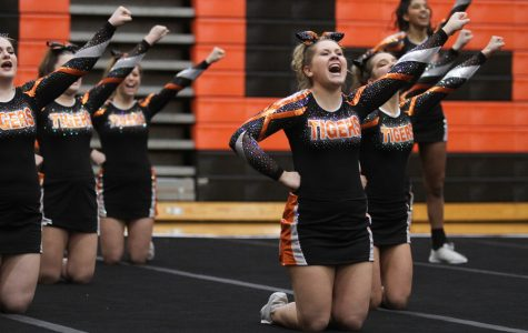 Cheer Springs from Sectionals to State